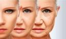 Выработка коллагена и упругость кожи