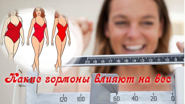 гормоны отвечают за вес