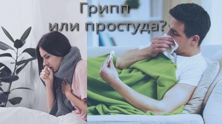 Грипп или простуда? Основные отличия.